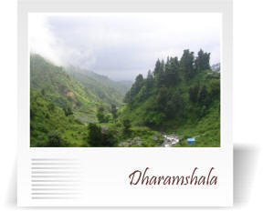 deccan-travels-corporation-dharmashala-nashik-india